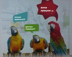 Фото: encrypted-tbn2.gstatic.com